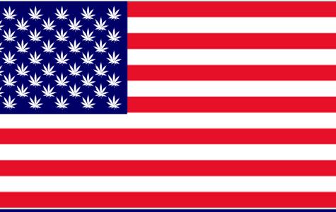 Marijuana Law Sparks Conversation