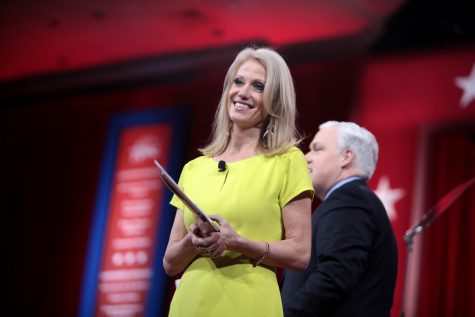 What could 'alternative facts' mean for Kellyanne Conway?