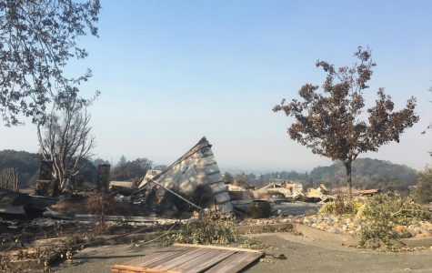 Home destroyed by fire in Sanoma, CA