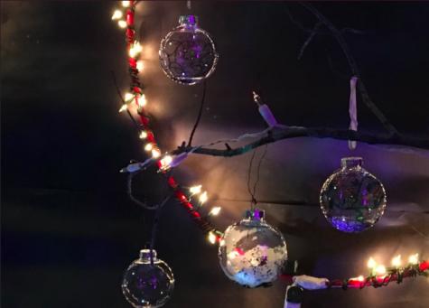 Festival of Lights brightens the community