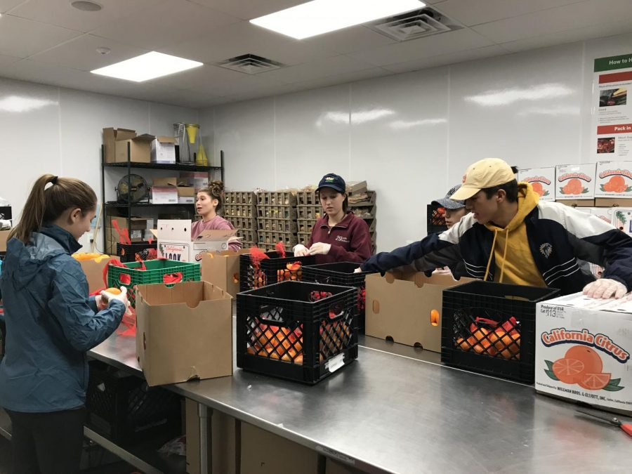 Students+volunteer+at+Arlington+Food+Assistance+Center