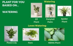 Turning a new leaf with greenery